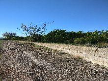 Terrenos en Montesa